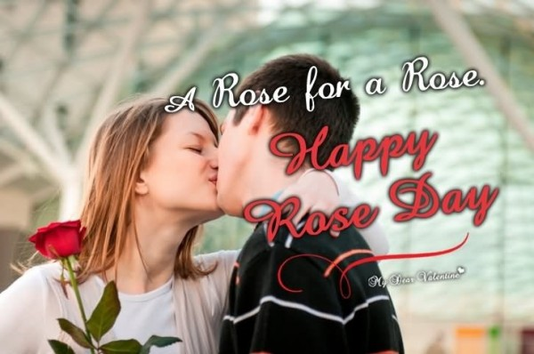 A rose for a rose happy rose day
