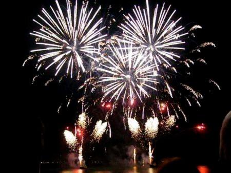 Bastille day fireworks picture