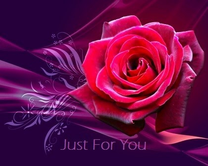 Beautiful rose just for you happy rose day