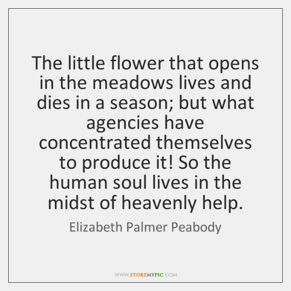The little flower that opens in the meadows lives and dies in ...