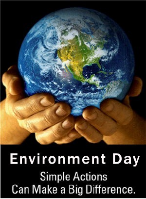 Environment day simple actions can make a big difference