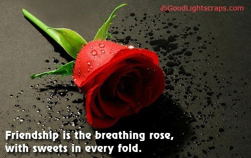 Friendship is the breathing rose with sweets in every fold happy rose day