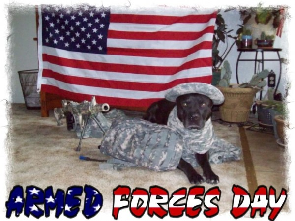 Happy american armed forces day image