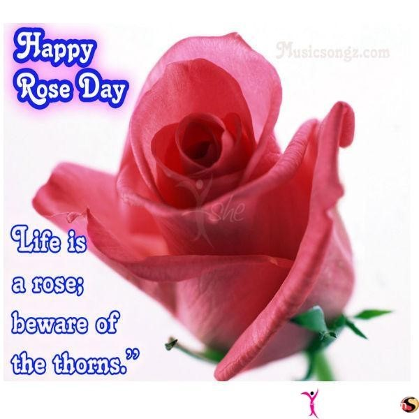 Happy rose day life is a rose beware of the thorns