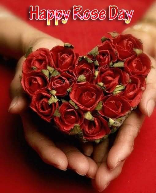Happy rose day roses heart