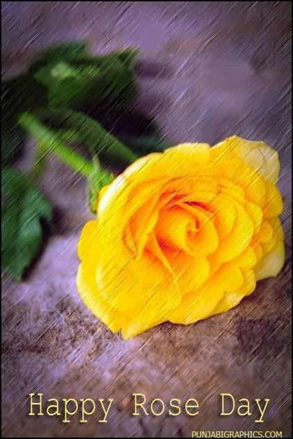 Happy rose day yellow rose image
