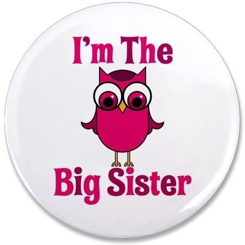 Im the big sister bird
