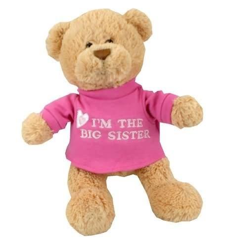 Im the big sister teddy bear