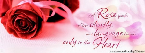 Rose day 2014 facebook cover picture