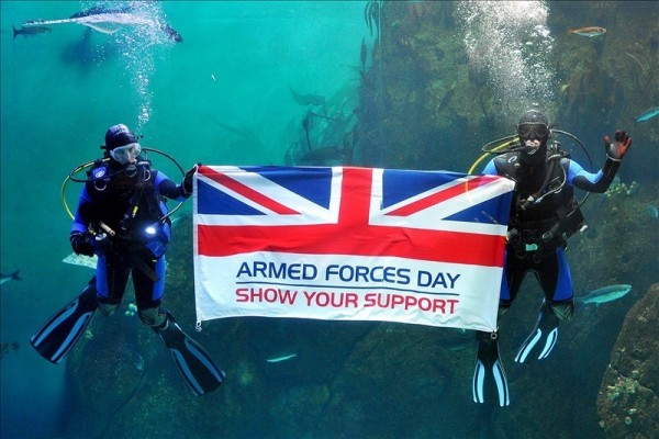 Swimmer under deep water showing flag with armed forces day