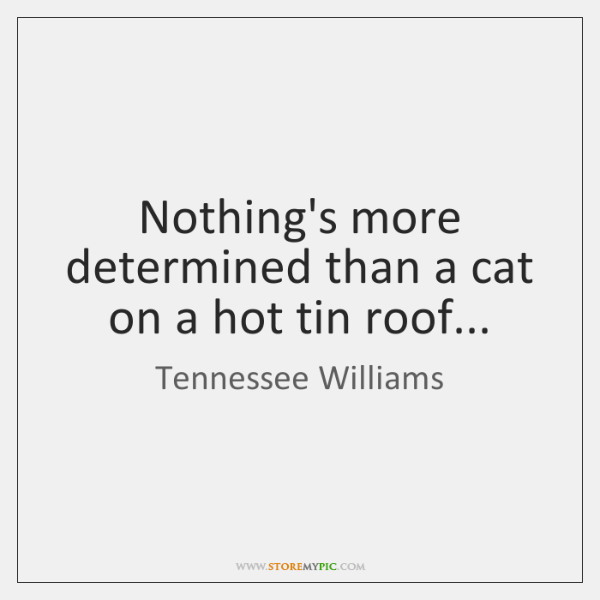 Nothing's more determined than a cat on a hot tin roof...