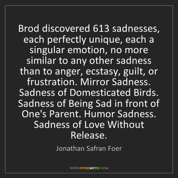 Jonathan Safran Foer: Brod discovered 613 sadnesses, each perfectly unique,...