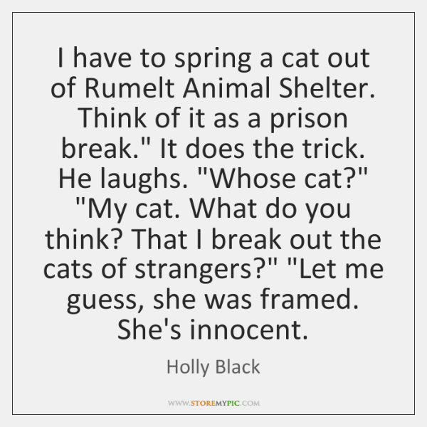 I have to spring a cat out of Rumelt Animal Shelter. Think ...