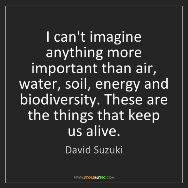 David Suzuki: I can't imagine anything more important than air, water,...
