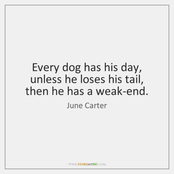 Every dog has his day, unless he loses his tail, then he ...