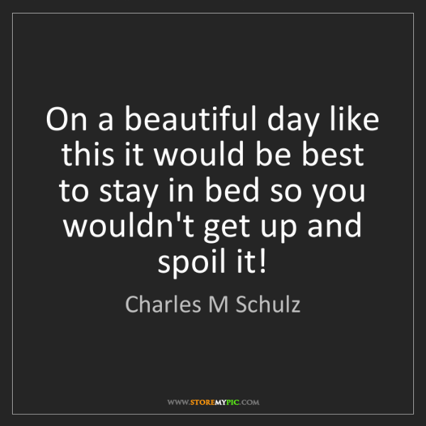 Charles M Schulz: On a beautiful day like this it would be best to stay...