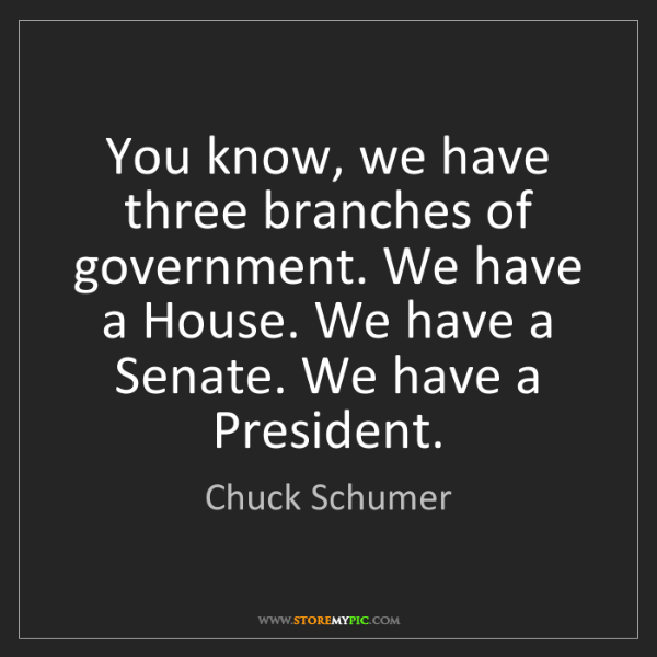 Chuck Schumer: You know, we have three branches of government. We have...