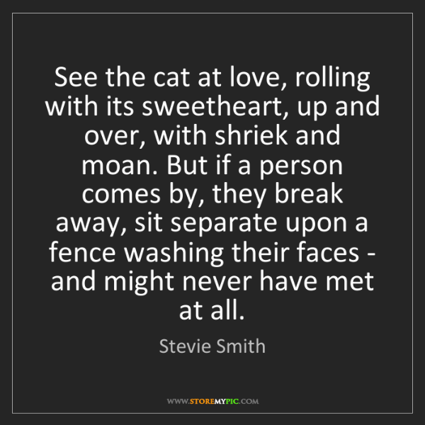 Stevie Smith: See the cat at love, rolling with its sweetheart, up...