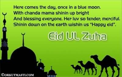 Eid ul zuha here comes the day once in a blue moon