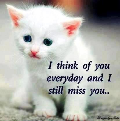 I Think Of You Everyday And I Still Miss You Storemypic