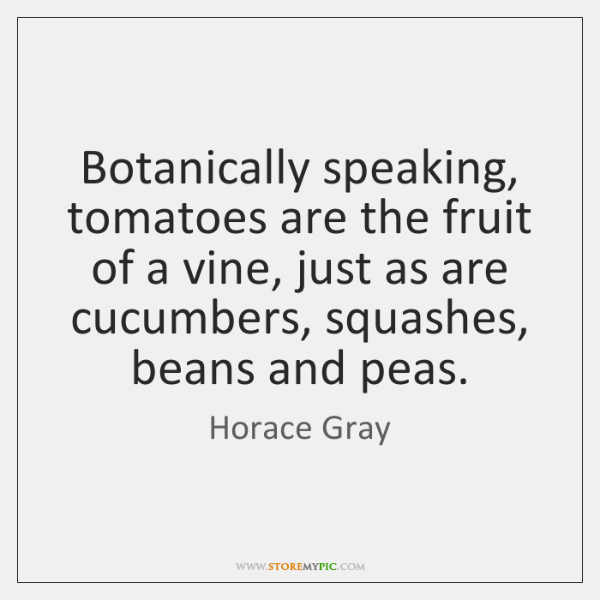 Botanically speaking, tomatoes are the fruit of a vine, just as are ...