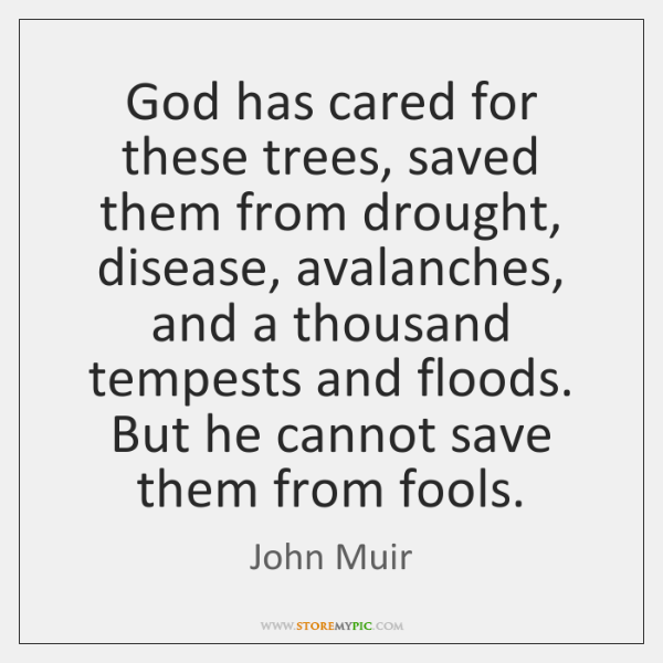God has cared for these trees, saved them from drought, disease, avalanches, ...