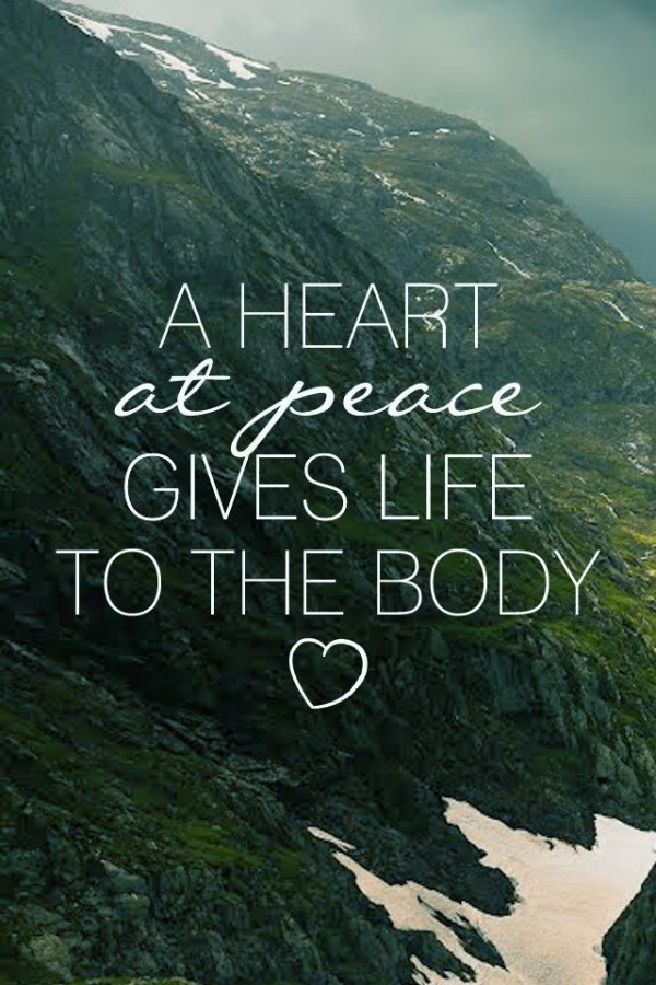 A heart at peace gives life to the body