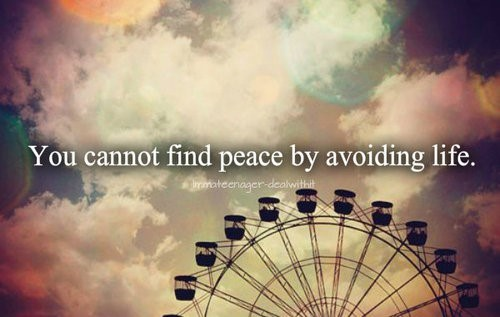 You cannot find peace by avoiding life 001