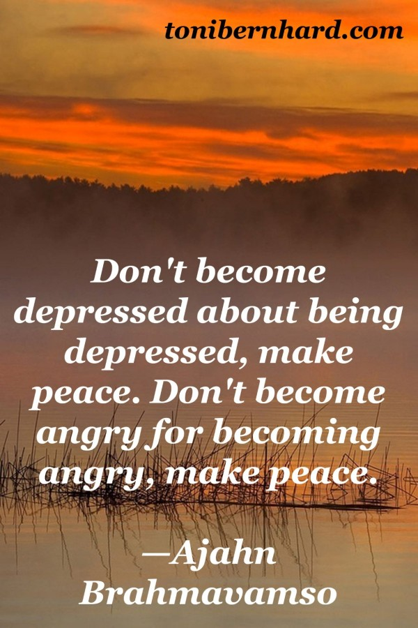 Dont become depressed about being depressed make peace dont become angry for becoming an