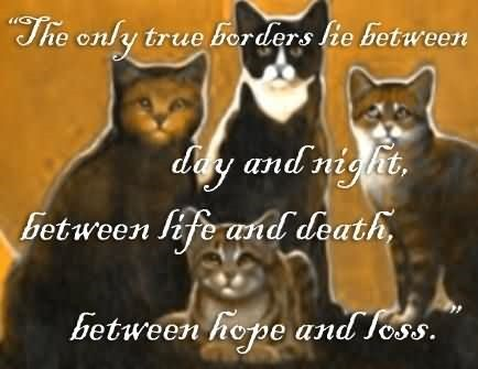 The only true borders lie between day and night between life and death beween hope and le