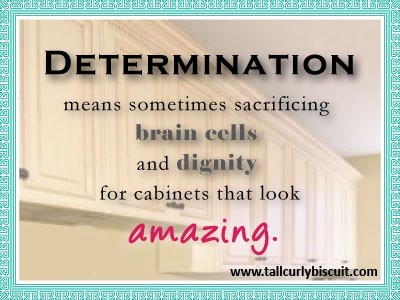Determination means sometimes sacrificing brain cells and dignity for cabinets t