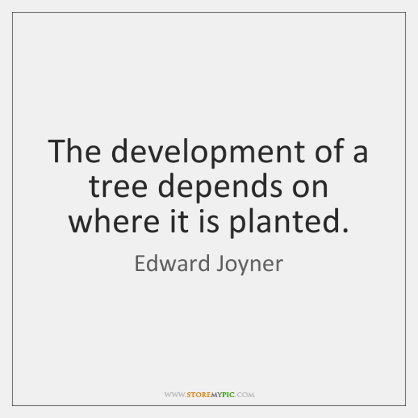 The development of a tree depends on where it is planted.