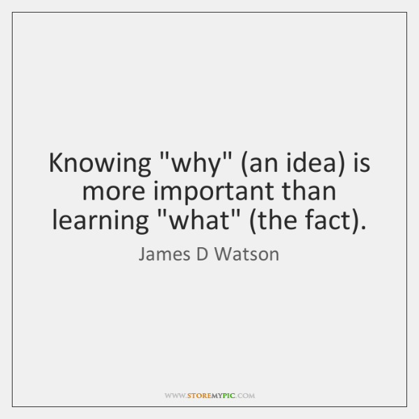"Knowing ""why"" (an idea) is more important than learning ""what"" (the fact)."