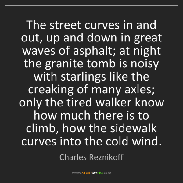 Charles Reznikoff: The street curves in and out, up and down in great waves...