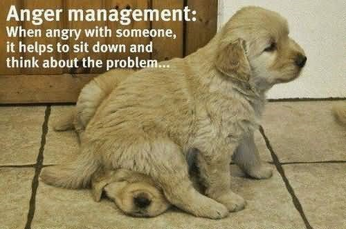 Anger management when angry with someone it helps to sit down