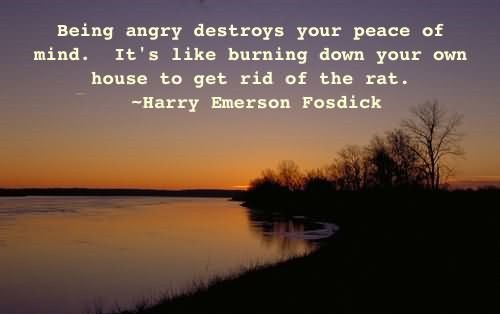 Being angry destroys your peace of mind its like burning down your own house to get rid