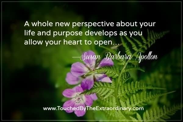 A whole new perspective about your life and purpose develops as you allow your hea