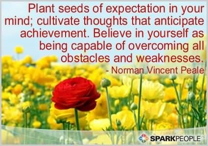 Plant seeds of expectation in your mind culitvate thoughts that anticipate achieve