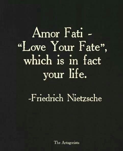 Amor fati love your fate which is in fact your life