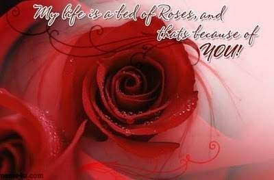 My life is a bed of roses