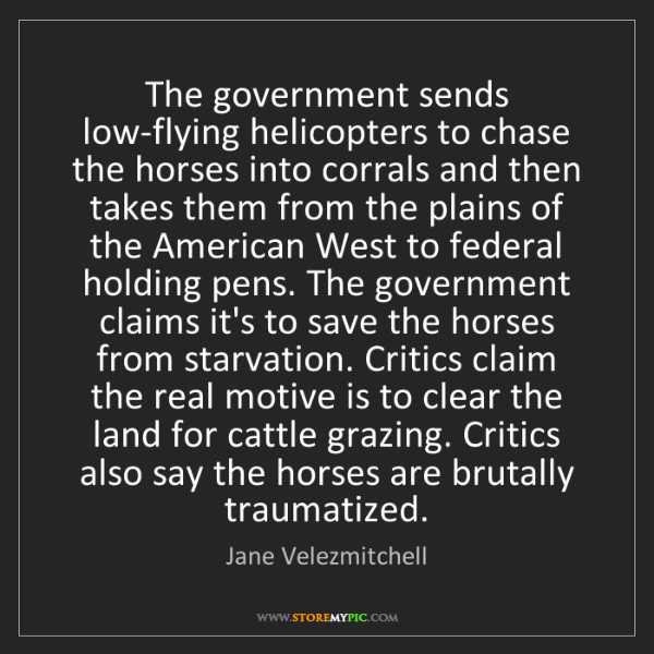 Jane Velezmitchell: The government sends low-flying helicopters to chase...