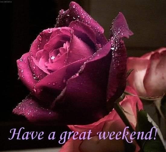 Have a great weekend beautiful rose