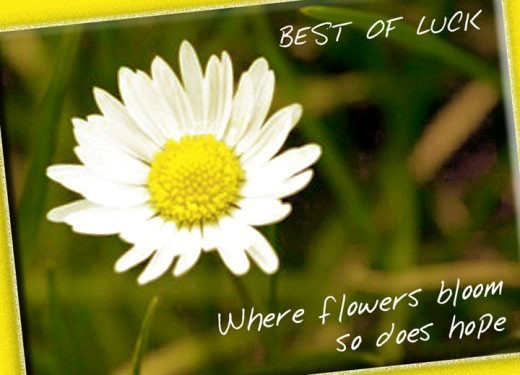 Best of luck where flower bloom so does hope