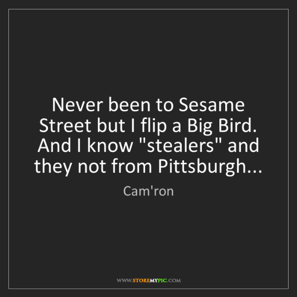 Cam'ron: Never been to Sesame Street but I flip a Big Bird.  And...