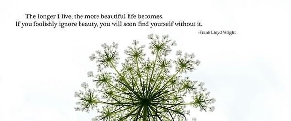 The longer i live the more beautiful life becomes if you foolishly ignore beaut