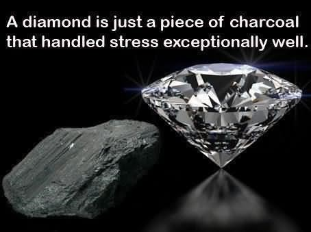 A diamond is just a piece of characoal that handled stress exceptionally well