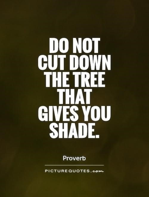 Tree Quotes Storemypic