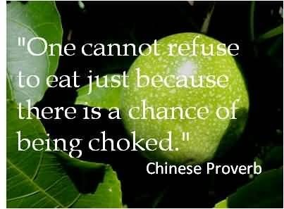 One cannot refuse to eat just because there is a chance of being choked chinese proverb