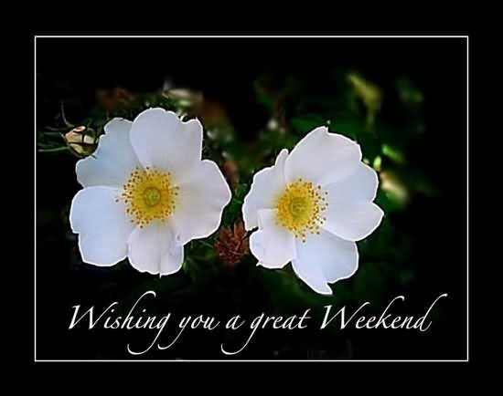 Wishing You A Great Weekend Storemypic
