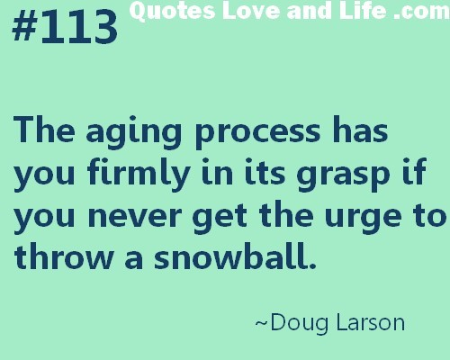 The aging process has you firmly in its grasp if you never get the urge to throw a snowbal